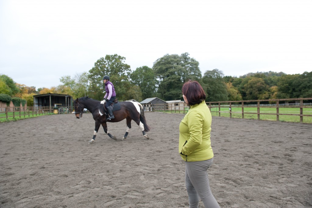 Riding Lesson with Horse & Rider Coach, Sally Ede